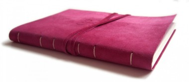 cropped-cropped-pink-diary11